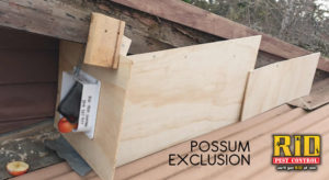 Possum Exclusion Box Out